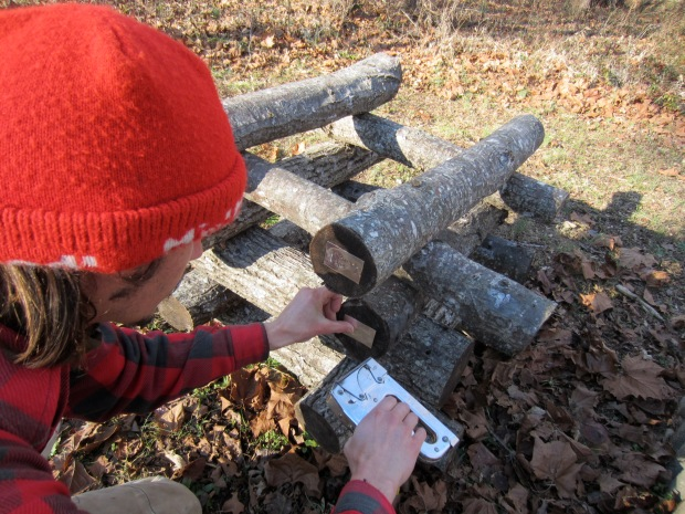 labeling shiitake logs