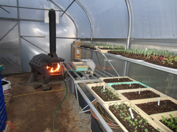 heat in the greenhouse