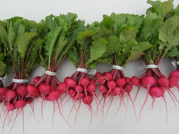 scarlet queen turnips