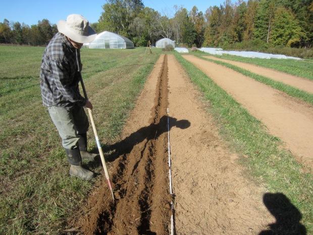 digging furrows