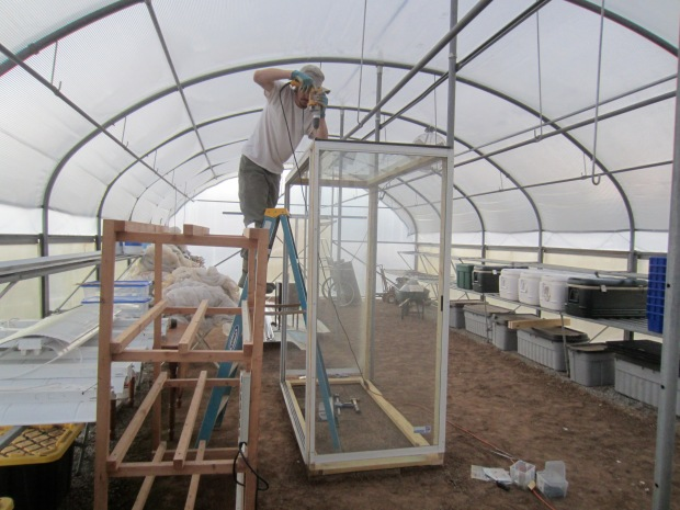 building a germination chamber